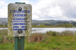 """""""Conservation Easement Boundary"""" USDA/NRCS sign in front of wetland"""