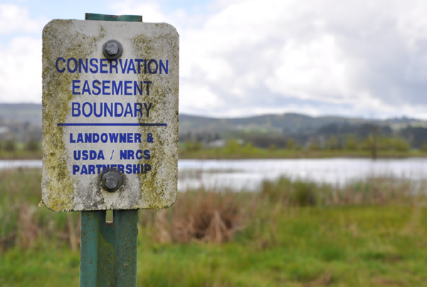 """Conservation Easement Boundary"" USDA/NRCS sign in front of wetland"