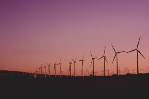 Wind turbines in rural environment at sunset